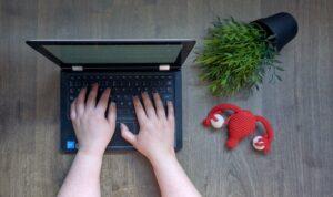 Familiarícese con los complementos de WordPress